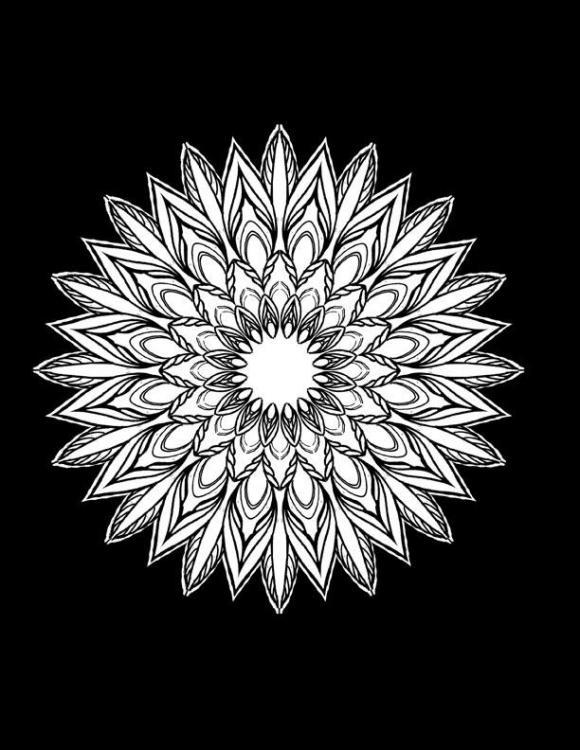 x Mandala line newA.jpg