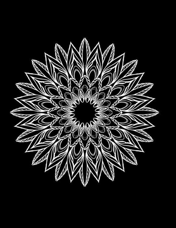 x Mandala line newB.jpg