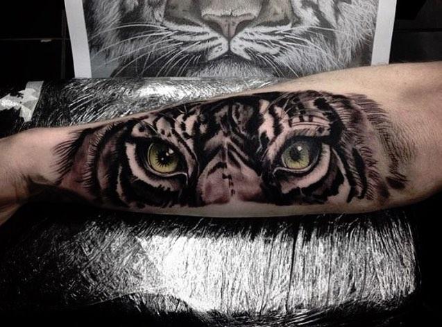 57f17ccae575a-tiger2.jpg