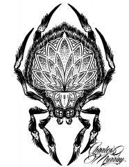 Dotwork Spider