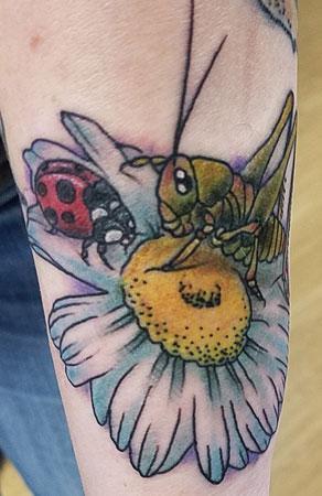 Grasshopper_Ladybug.jpg