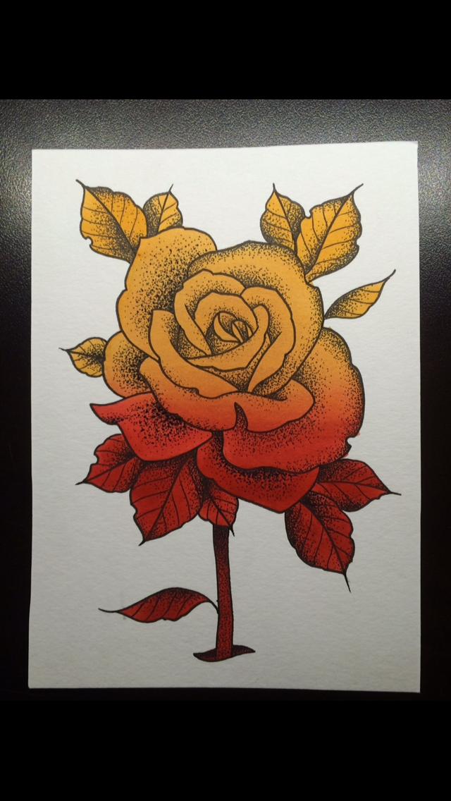 Neo-Trad Rose
