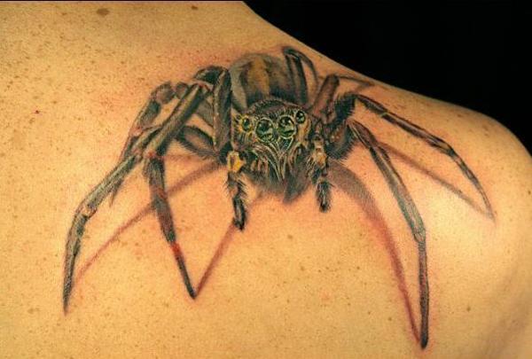 23-spider_tattoo_by_abttattoo.jpg