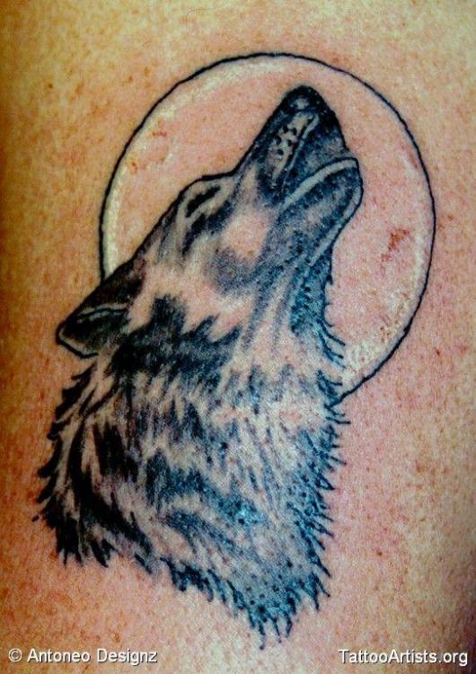 a003a8804f1e8a6a2b6e003160bf3ef0--howling-wolf-tattoo-tattoo-wolf.jpg