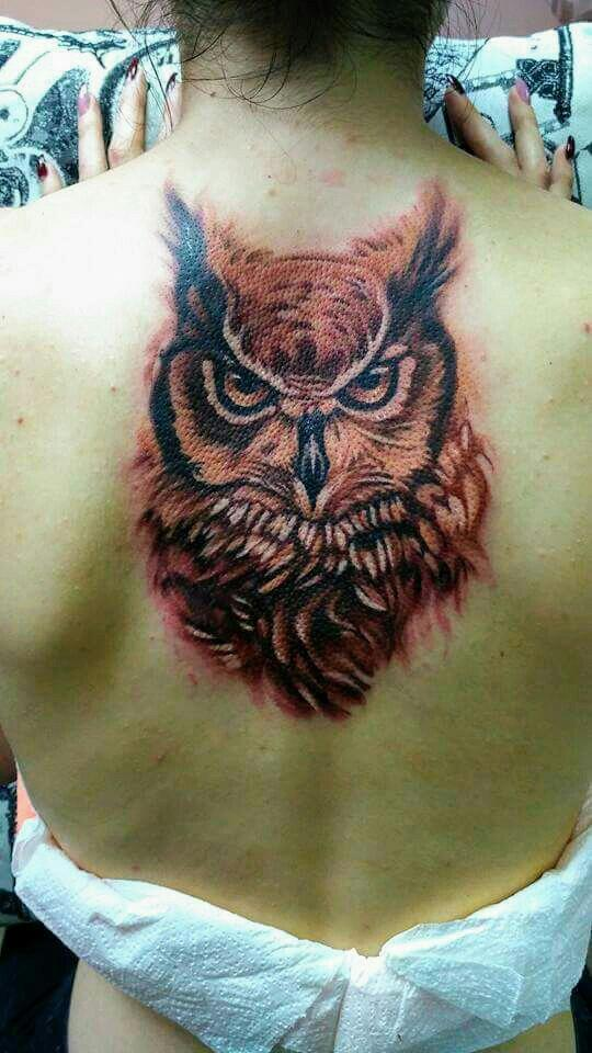 My work, animal