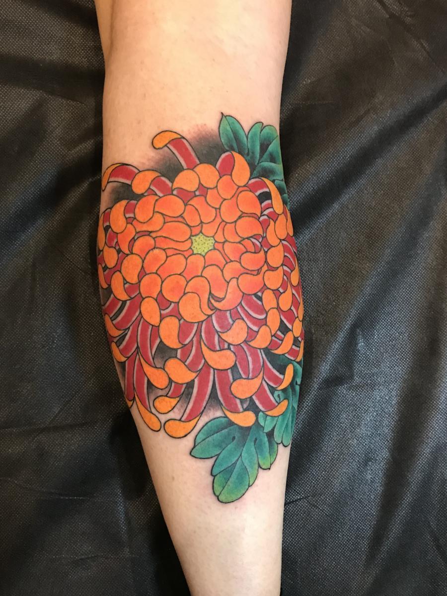 Chrysanthemum by Mike Rubendall