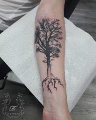 treetattoo_tattoobucharest_tatuajebucuresti.jpg