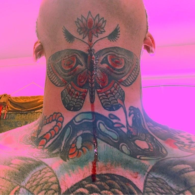 Buddha Moth